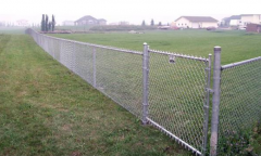 Which fence should I buy, galvanized or PVC coated chain-link fencing?