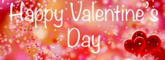 Happy Valentine's day,welcome to our website